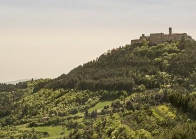 Monte Santa Maria Tiberina - panoramica