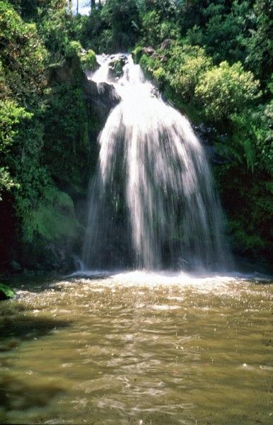 Parco del Monte Cucco - 15