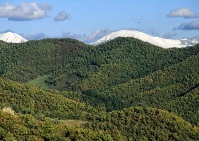 Parco del Monte Cucco - 16