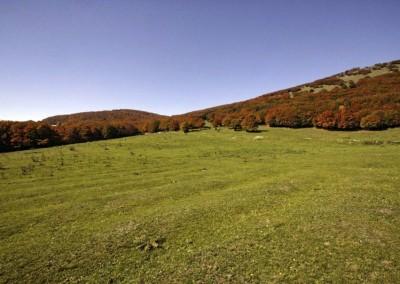 Parco del Monte Cucco - 5