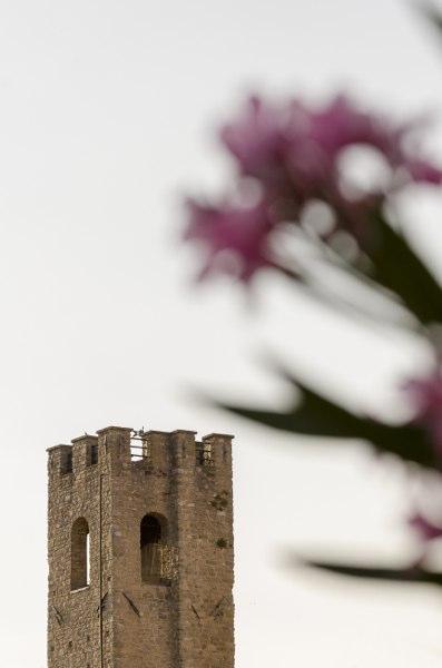 Valfabbrica - dettaglio campanile con fiori
